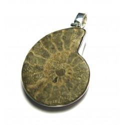 Anhänger Ammonit 35-40 mm 925er Silber