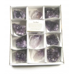 Amethyst Start-Set 7 cm VE 12 Stück