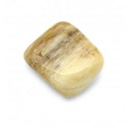 Trommelstein versteinertes Holz Opal-Holz 1 Stück