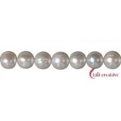 Strang rund Süßwasser-Perle A weiß-creme 10 mm
