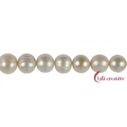 Strang Potatoe Süßwasser-Perle A weiß-creme 10-11 mm