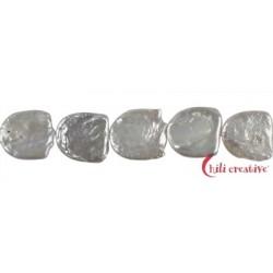 Strang Freeform flach Süßwasser-Perle A+ weiß-creme 10 x 10 mm