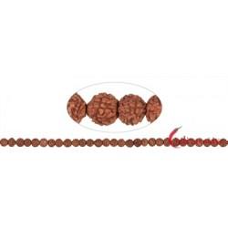 Strang Kugeln Rudraksha (rotbraun) 6 mm