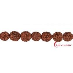 Strang Kugeln Rudraksha (rotbraun) 10 mm