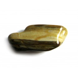 Trommelstein Versteinertes Holz Mix 100 g