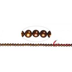 Strang rund Süßwasser-Perle A braun (gefärbt) 4-4,5 mm