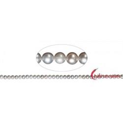 Strang rund Süßwasser-Perle A silbergrau (gefärbt) 4-4,5 mm