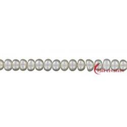 Strang Button Süßwasser-Perle 3,5-4 mm