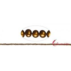 Strang Potatoe Süßwasser-Perle A braun (gefärbt) 3-4 mm