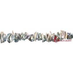 Strang Keshi Süßwasser-Perle silbergrau (natur) 2-3 x 10-12 mm