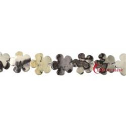 Strang Blüte Porzellanit-Kalk 20 mm